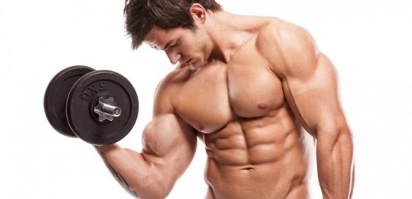 Gather Information About Legal Steroids