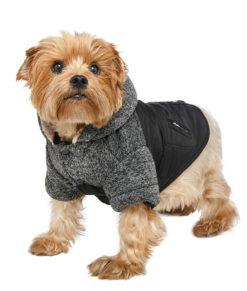 dog clothing1