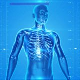 How Can A Chiropractor Improve Your Posture?