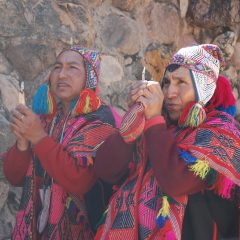 Facts Related to the Healing Procedure of the Heart of the Shaman