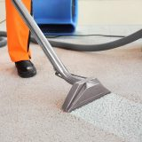 Different pest control methods that you can choose from